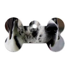 Great Dane harlequin  Dog Tag Bone (Two Sides)