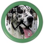 Great Dane harlequin  Color Wall Clocks Front