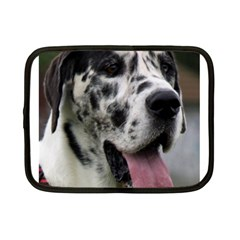 Great Dane harlequin  Netbook Case (Small)