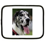 Great Dane harlequin  Netbook Case (Large) Front