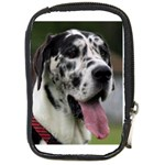 Great Dane harlequin  Compact Camera Cases Front