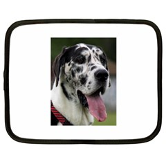 Great Dane harlequin  Netbook Case (XXL)