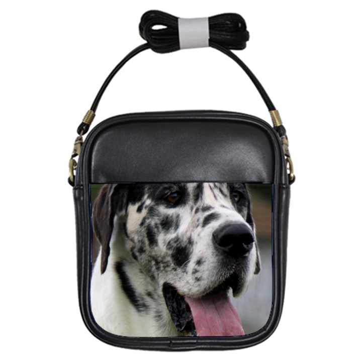 Great Dane harlequin  Girls Sling Bags
