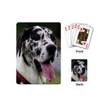 Great Dane harlequin  Playing Cards (Mini)  Back