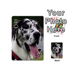Great Dane harlequin  Playing Cards 54 (Mini)  Front - SpadeA