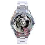 Great Dane harlequin  Stainless Steel Analogue Watch Front