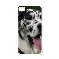 Great Dane harlequin  Apple iPhone 4 Case (White)