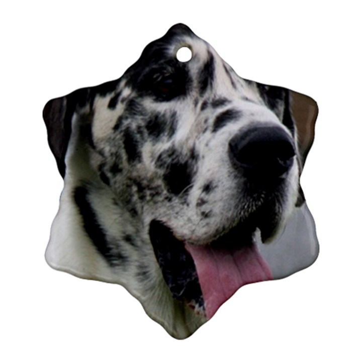 Great Dane harlequin  Ornament (Snowflake)