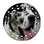 Great Dane harlequin  Round Filigree Ornament (2Side) Back
