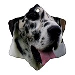 Great Dane harlequin  Snowflake Ornament (2-Side) Front