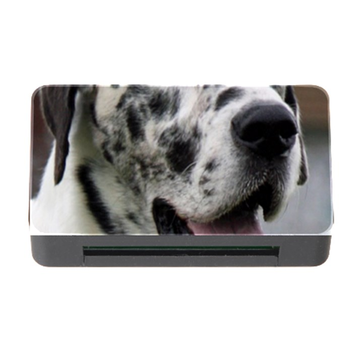 Great Dane harlequin  Memory Card Reader with CF