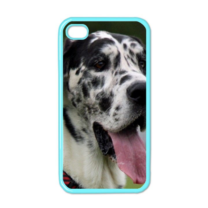 Great Dane harlequin  Apple iPhone 4 Case (Color)