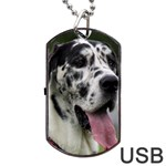 Great Dane harlequin  Dog Tag USB Flash (Two Sides)  Back