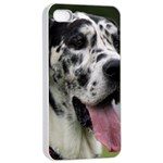 Great Dane harlequin  Apple iPhone 4/4s Seamless Case (White) Front