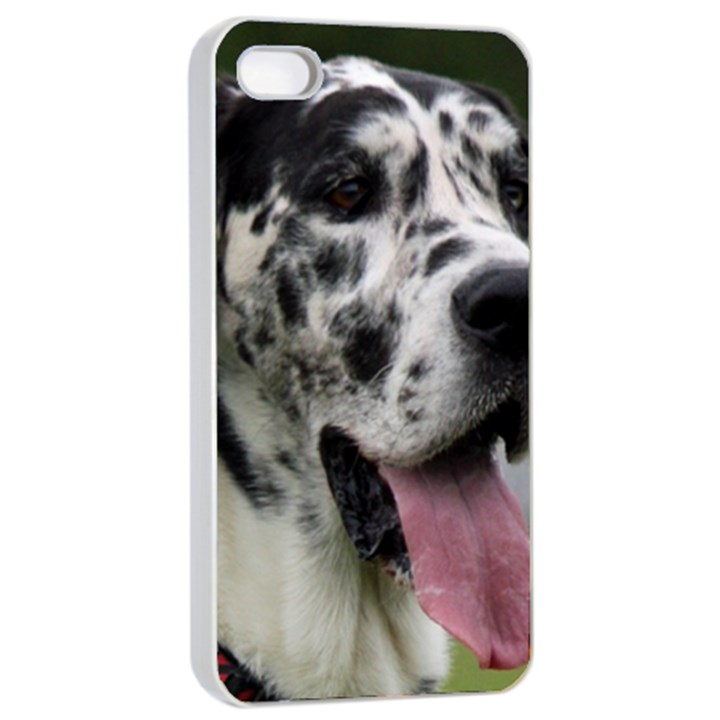 Great Dane harlequin  Apple iPhone 4/4s Seamless Case (White)