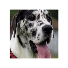 Great Dane harlequin  Birthday Cake 3D Greeting Card (7x5)