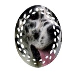 Great Dane harlequin  Oval Filigree Ornament (2-Side)  Back