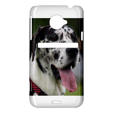 Great Dane harlequin  HTC Evo 4G LTE Hardshell Case