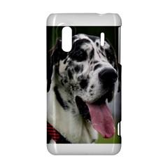 Great Dane harlequin  HTC Evo Design 4G/ Hero S Hardshell Case
