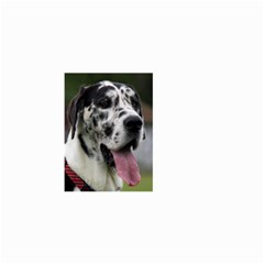 Great Dane harlequin  Small Garden Flag (Two Sides)