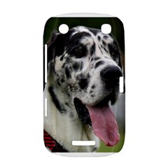 Great Dane harlequin  BlackBerry Curve 9380