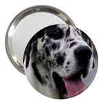 Great Dane harlequin  3  Handbag Mirrors Front