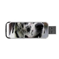 Great Dane harlequin  Portable USB Flash (Two Sides)