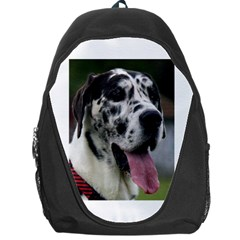 Great Dane harlequin  Backpack Bag