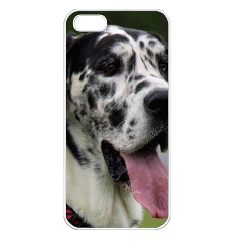 Great Dane harlequin  Apple iPhone 5 Seamless Case (White)