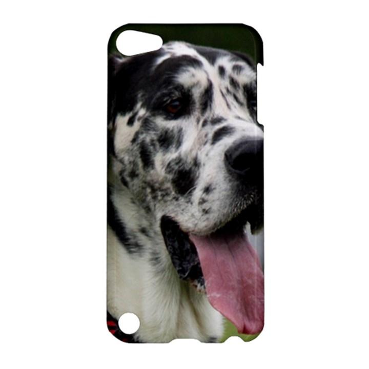 Great Dane harlequin  Apple iPod Touch 5 Hardshell Case
