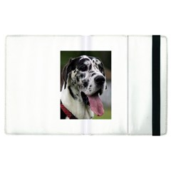 Great Dane Harlequin  Apple Ipad 2 Flip Case