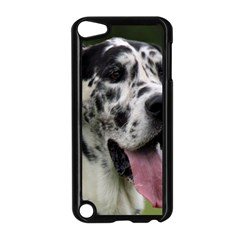 Great Dane Harlequin  Apple Ipod Touch 5 Case (black)
