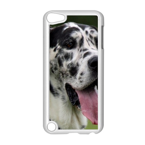 Great Dane harlequin  Apple iPod Touch 5 Case (White)