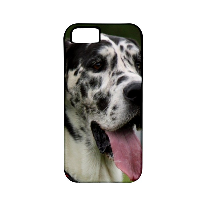 Great Dane harlequin  Apple iPhone 5 Classic Hardshell Case (PC+Silicone)