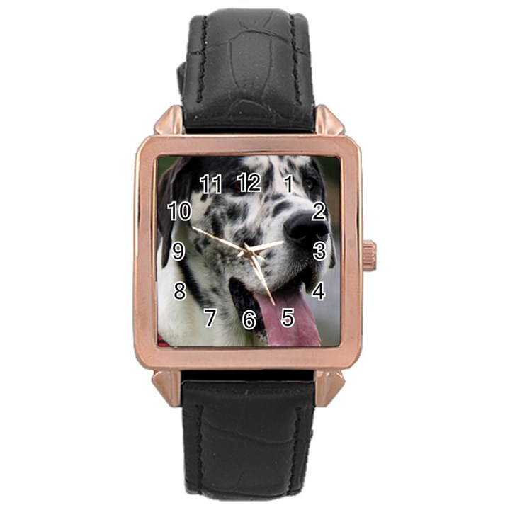 Great Dane harlequin  Rose Gold Leather Watch