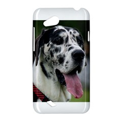 Great Dane harlequin  HTC Desire VC (T328D) Hardshell Case