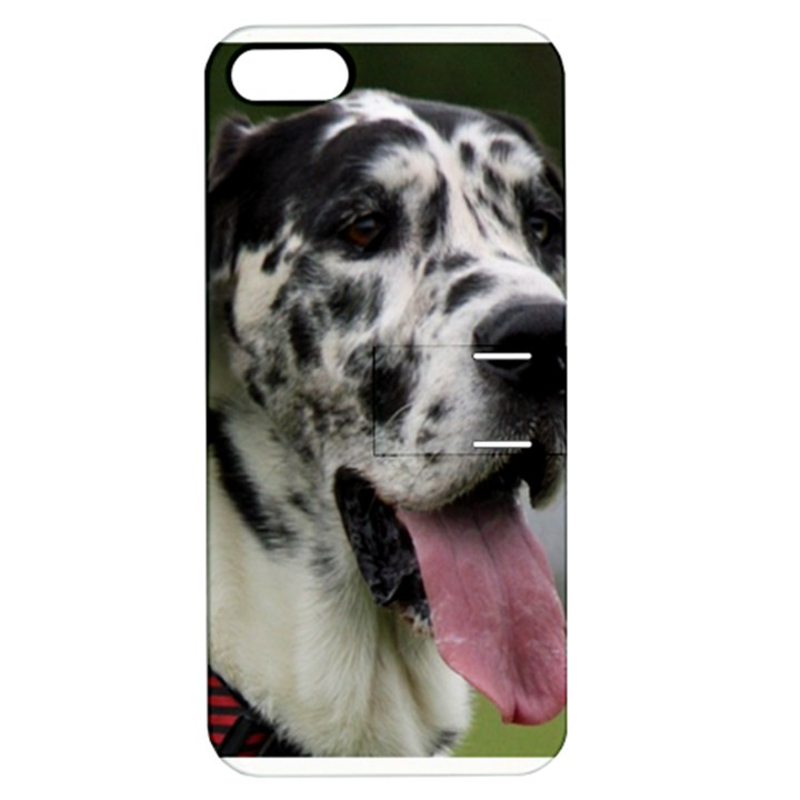 Great Dane harlequin  Apple iPhone 5 Hardshell Case with Stand