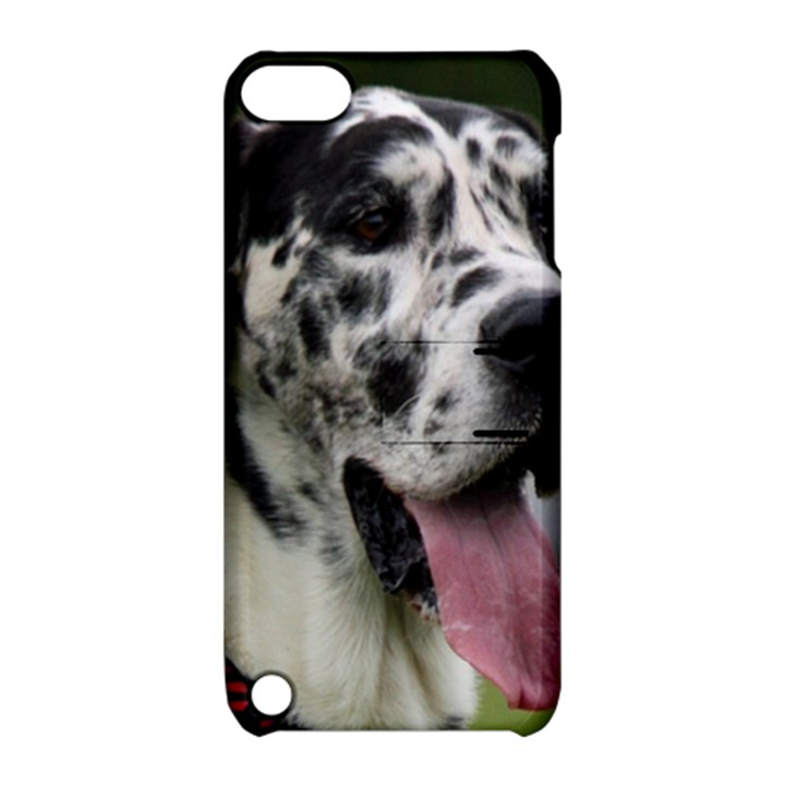 Great Dane harlequin  Apple iPod Touch 5 Hardshell Case with Stand