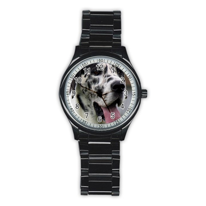 Great Dane harlequin  Stainless Steel Round Watch
