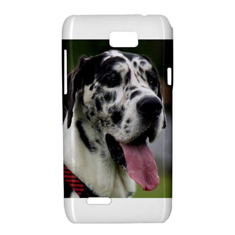 Great Dane harlequin  Motorola XT788