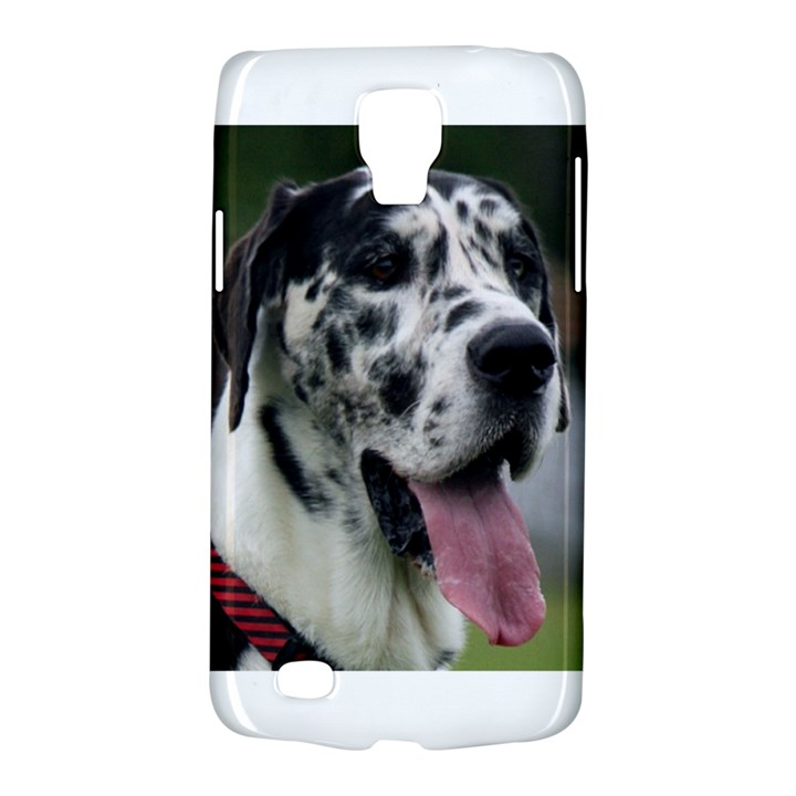 Great Dane harlequin  Galaxy S4 Active