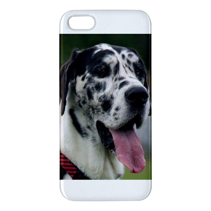 Great Dane harlequin  iPhone 5S/ SE Premium Hardshell Case
