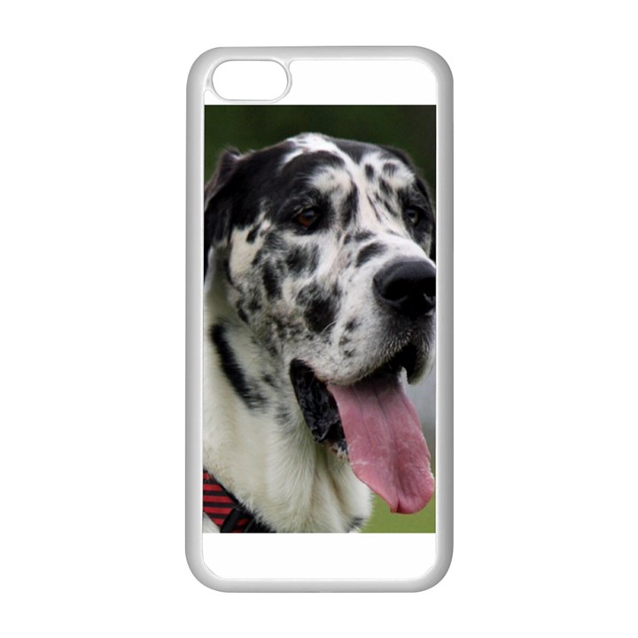 Great Dane harlequin  Apple iPhone 5C Seamless Case (White)