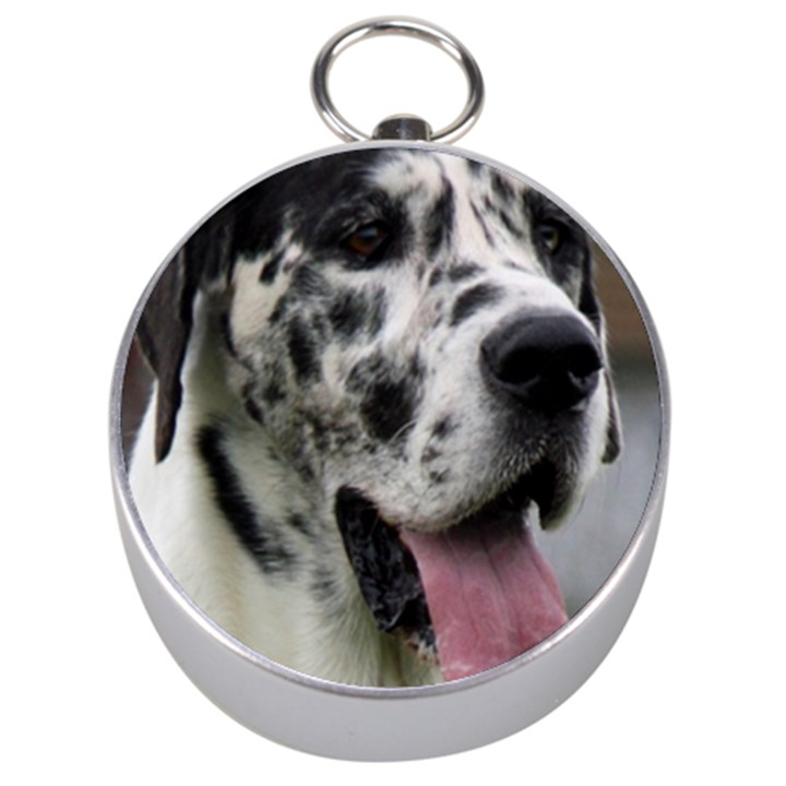 Great Dane harlequin  Silver Compasses
