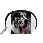Great Dane harlequin  Accessory Pouches (Small)  Front