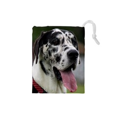 Great Dane harlequin  Drawstring Pouches (Small)