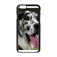 Great Dane harlequin  Apple iPhone 6/6S Black Enamel Case
