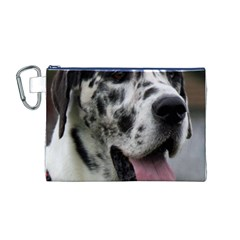 Great Dane Harlequin  Canvas Cosmetic Bag (m)