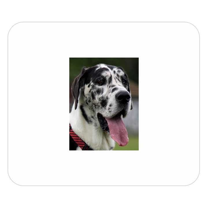 Great Dane harlequin  Double Sided Flano Blanket (Small)