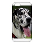 Great Dane harlequin  iPhone 6/6S TPU Case Front